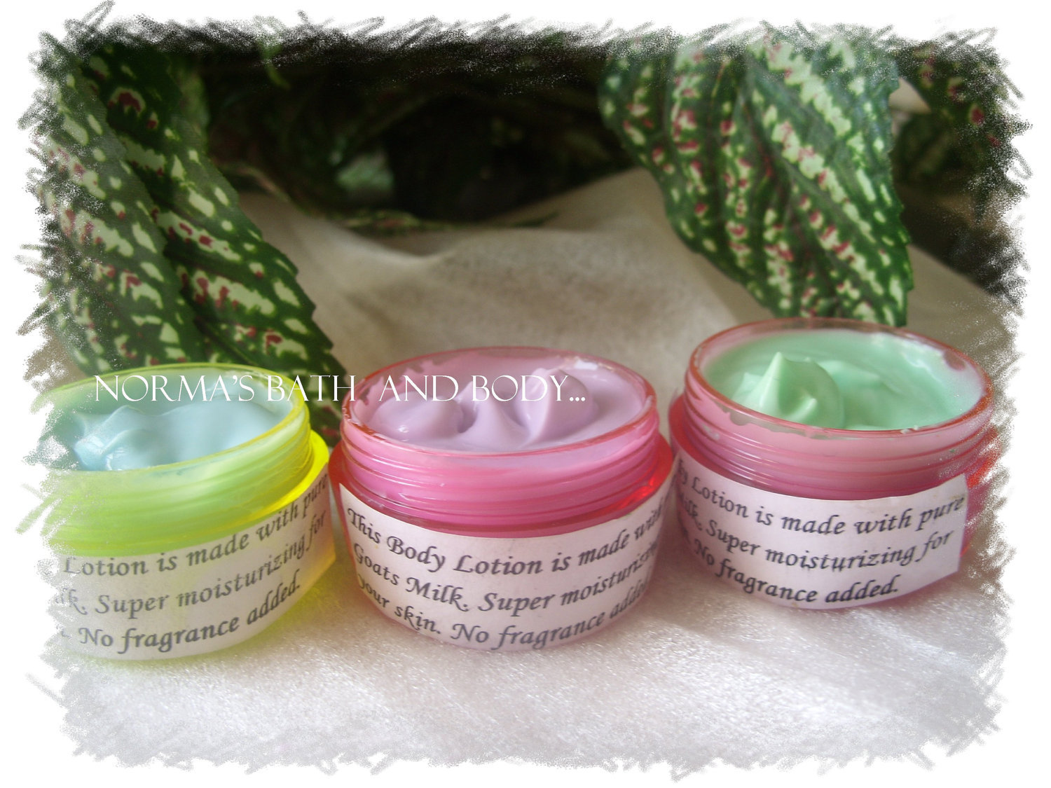 trial size shea  lotions. set of 3