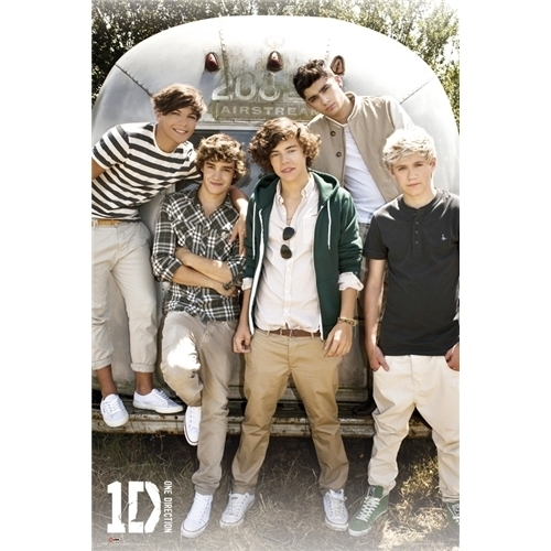 One Direction 1D Airstream Poster Official Brand New Harry Zayn Niall Liam Louis