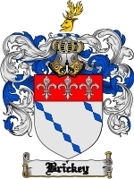 Primary image for Brickey Family Crest / Coat of Arms JPG or PDF Image Download