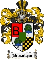 Primary image for Brosnihan Family Crest / Coat of Arms JPG or PDF Image Download