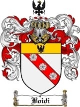 Boidi Family Crest / Coat of Arms JPG or PDF Image Download - $6.99