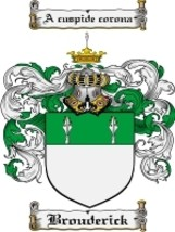 Brouderick Family Crest / Coat of Arms JPG or PDF Image Download - $6.99