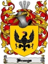 Brungs Family Crest / Coat of Arms JPG or PDF Image Download - $6.99