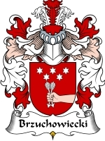 Primary image for Brzuchowiecki Family Crest / Coat of Arms JPG or PDF Image Download