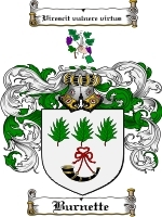 Primary image for Burnette Family Crest / Coat of Arms JPG or PDF Image Download