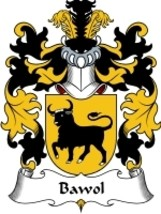 Bawol Family Crest / Coat of Arms JPG or PDF Image Download - $6.99