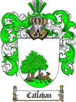 Primary image for Callahan Family Crest / Coat of Arms JPG or PDF Image Download