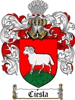 Primary image for Ciesla Family Crest / Coat of Arms JPG or PDF Image Download