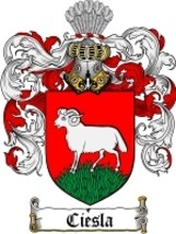 Ciesla Family Crest / Coat of Arms JPG or PDF Image Download - $6.99