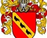 Collins coat of arms download thumb155 crop