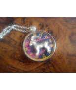 Astrological Sign 3D Capricorn Necklace. Zodiac Charm, Astrology - $22.22