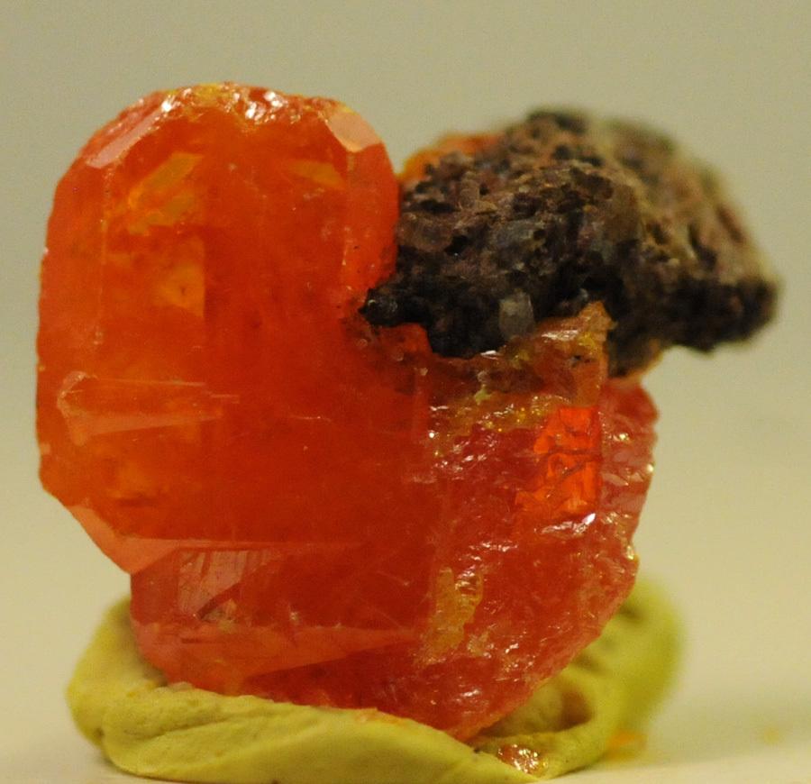 #1623 Wulfenite-Red Cloud Mine, Arizona