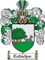 Primary image for Callachan Family Crest / Coat of Arms JPG or PDF Image Download