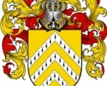 Clare coat of arms download thumb155 crop