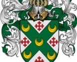 Corse coat of arms download thumb155 crop