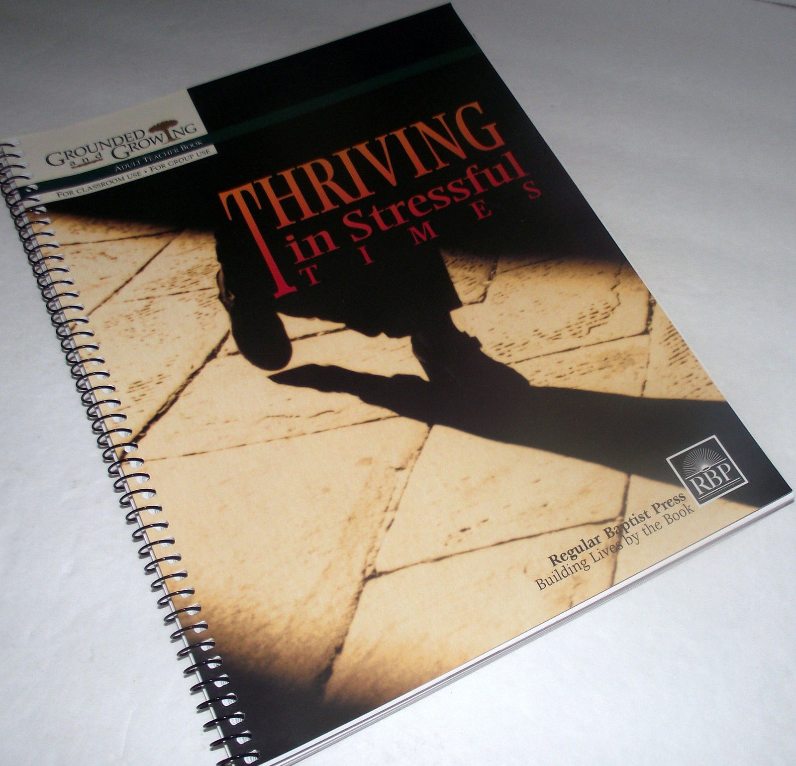Bible Lessons Esther Adult Teacher Thriving Stressful Times Grounded Growing