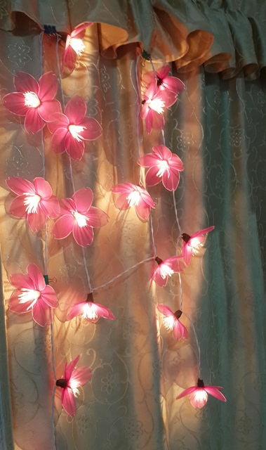 STRING LIGHTS CHRISTMAS CLASSIC APRICOT PURPLE FLOWERS 20 PARTY,DECOR,WEDDING