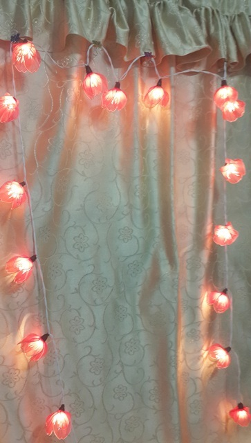 STRING LIGHTS CHRISTMAS SWEET RED APRICOT FLOWERS 20 PARTY,DECOR,WEDDING