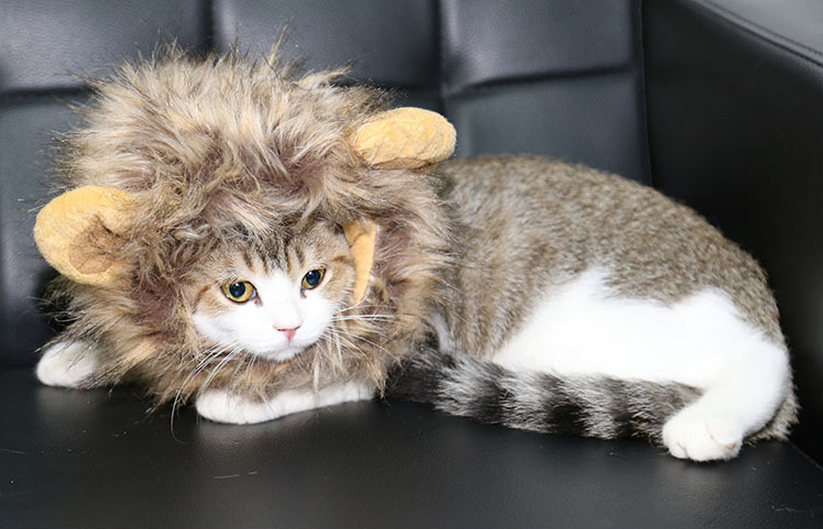 Fancy Pet Costume Cute Lion Mane Cat Hat Wig Cosplay Stuffed Plush Face Mask