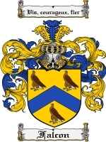 Primary image for Falcon Family Crest / Coat of Arms JPG or PDF Image Download