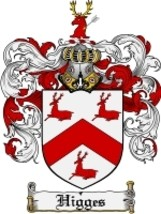Higges Family Crest / Coat of Arms JPG or PDF Image Download - $6.99