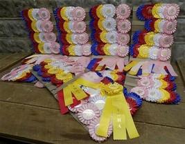 Ribbon Place Awards, NOS IWHA Horseman Prizes, Walking Horse Awards b, - $99.00