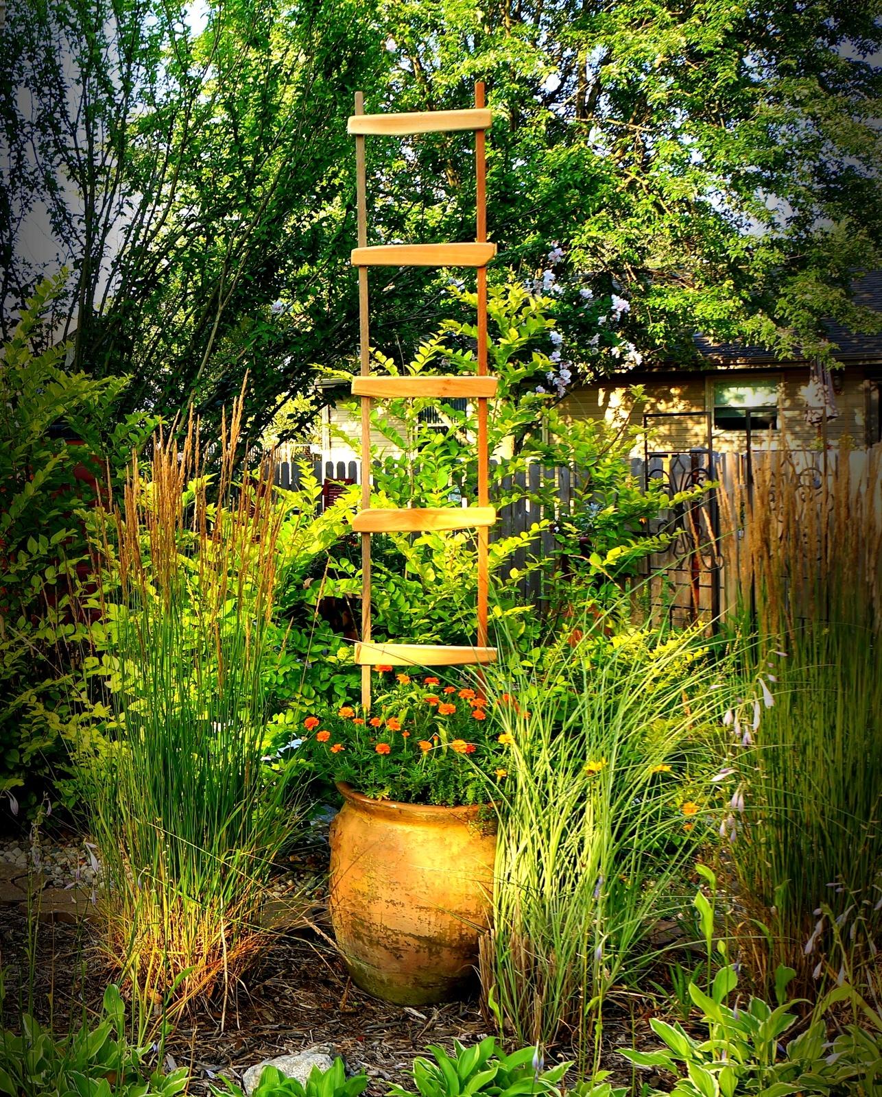 Tall Garden Trellis Decorative Ladder Pot And 49 Similar Items. Dsc03861