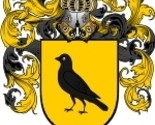 Didomenico coat of arms download thumb155 crop