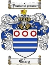 Groy Family Crest / Coat of Arms JPG or PDF Image Download - $6.99