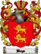 Bays Family Crest / Coat of Arms JPG or PDF Image Download - $6.99