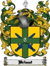 Briend Family Crest / Coat of Arms JPG or PDF Image Download - $6.99