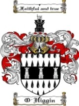 O'Higgin Family Crest / Coat of Arms JPG or PDF Image Download - $6.99