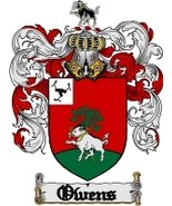 Owens Family Crest / Coat of Arms JPG or PDF Image Download - $6.99