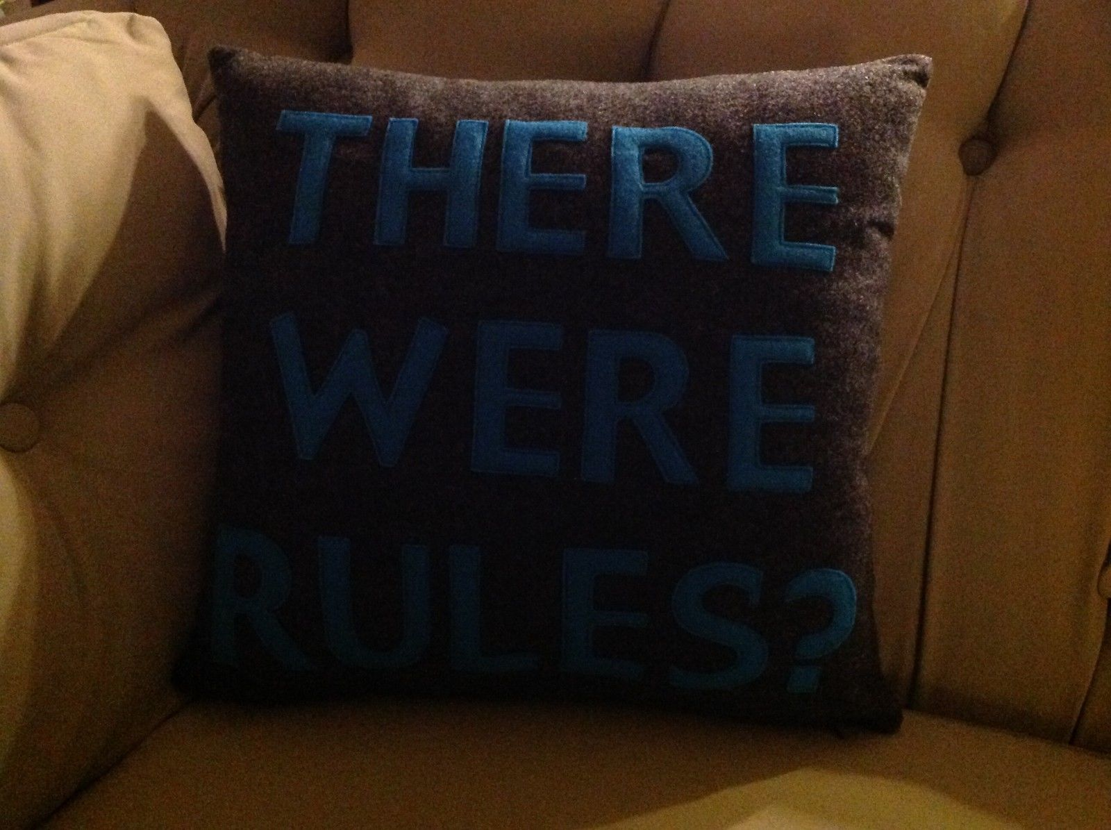 New fun throw pillow  Made in USA There were Rules ?   by Alexandra Ferguson