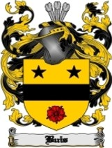 Buis Family Crest / Coat of Arms JPG or PDF Image Download - $6.99