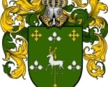 Curtin coat of arms download thumb155 crop