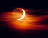 New-moon-1_thumb155_crop