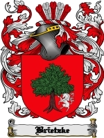 Primary image for Brietzke Family Crest / Coat of Arms JPG or PDF Image Download