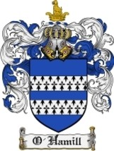 O'Hamill Family Crest / Coat of Arms JPG or PDF Image Download - $6.99