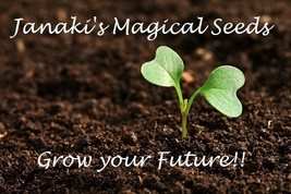 $Super Charged Wealth Seeds~Grow Your Own Magical Plant Voodoo Power Authentic$ - $39.99