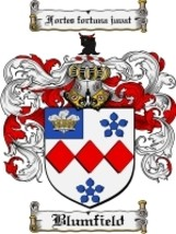 Blumfield Family Crest / Coat of Arms JPG or PDF Image Download - $6.99