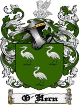 O'Hern Family Crest / Coat of Arms JPG or PDF Image Download - $6.99