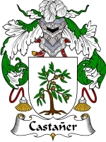Primary image for Castaner Family Crest / Coat of Arms JPG or PDF Image Download