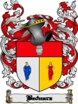 Bednarz Family Crest / Coat of Arms JPG or PDF Image Download - $6.99