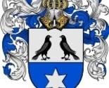 Cucco coat of arms download thumb155 crop