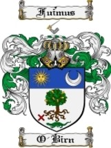 O'Birn Family Crest / Coat of Arms JPG or PDF Image Download - $6.99