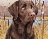 Chocolate lab  cross stitch pattern thumb155 crop