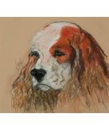 Cocker Spaniel Pastel Drawing Dog Art Solomon - Idle Thought - $160.00