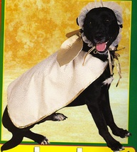 PET COSTUME ANGEL Size Small - $15.00