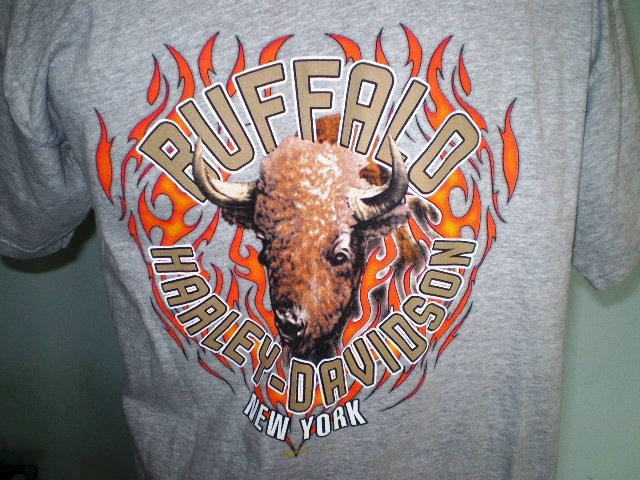 Harley-Davidson Gray T-Shirt Large Buffalo, New York